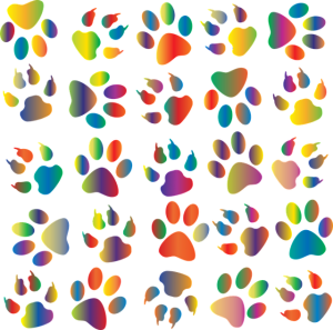 Multi colored canvas showing many types of animal footprints